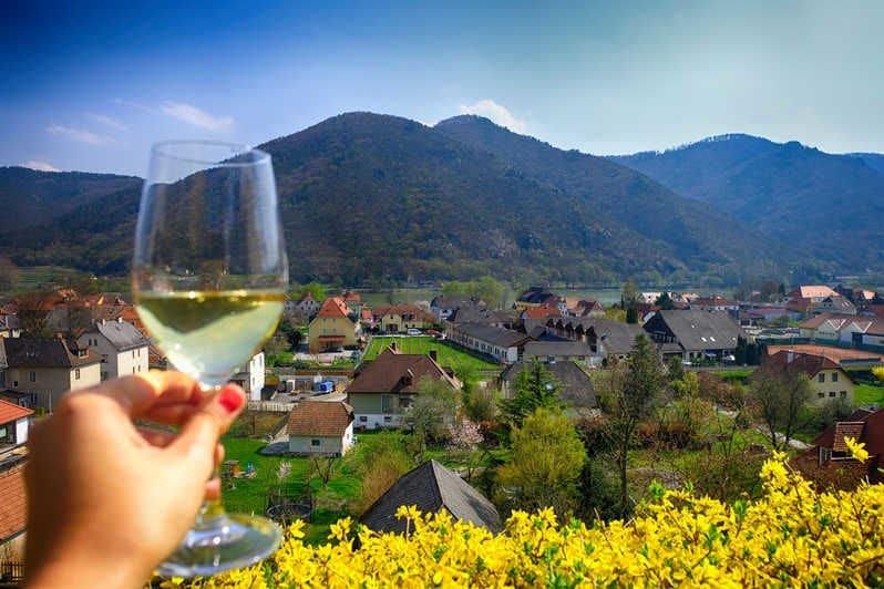 Topvine Wachau oestrig vinsmagning