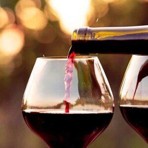 Topvine Italiano Classico Vinsmagning